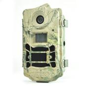 Фотоловушка с выспшкой BG962X36W